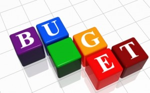 bugetul-pentru-2014-si-proiectul-legii-descentralizarii-aprobate-in-guvern-235212