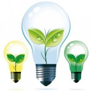 certificate_verzi_energie_verde_bizzpedia