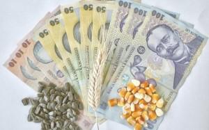 apia-fermierii-au-primit-subventii-de-3-63-miliarde-de-lei-in-2014-12050