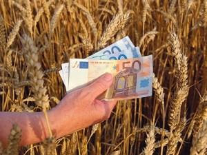 bani-pentru-agricultura